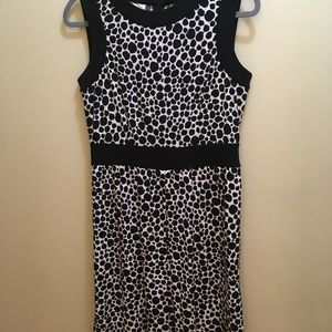 Talbots Ivory and Black Dress, Size 8